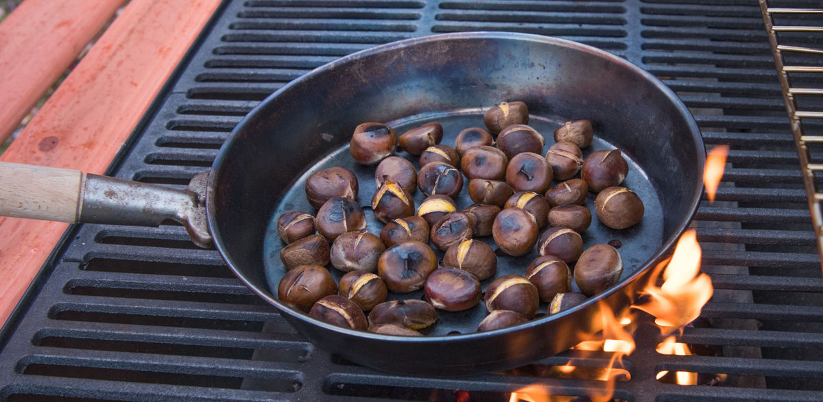Virginia Chestnuts Bring Back a Holiday Classic