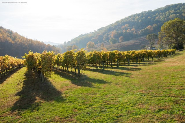 Offbeat Adventures in Virginia Wine Country