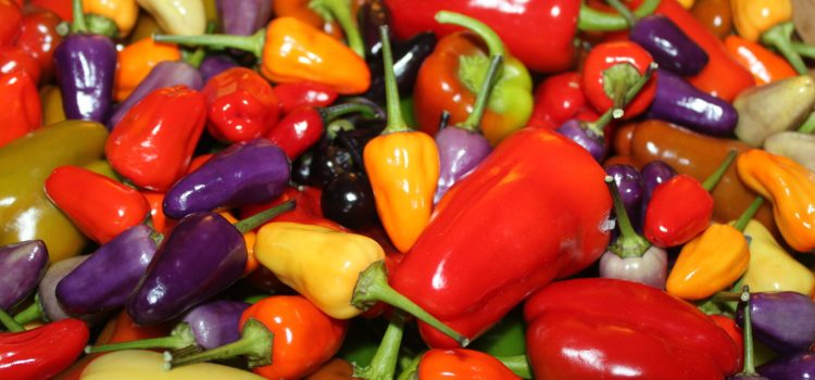 How To Use All Of Those Fresh Garden Peppers In The Kitchen