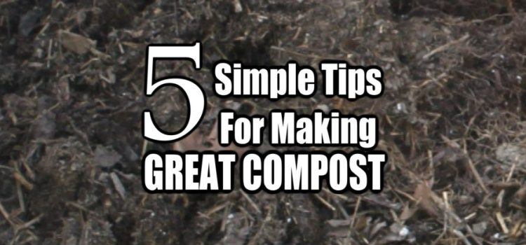 5 Simple Tips To Making Great Compost – For A Great Garden!