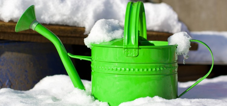 4 Wintertime Projects To Get Your Garden Prepared For Next Year