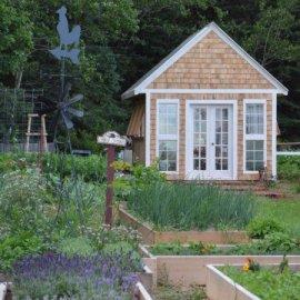 An Incredible New Garden Website For Gardeners, By Gardeners!
