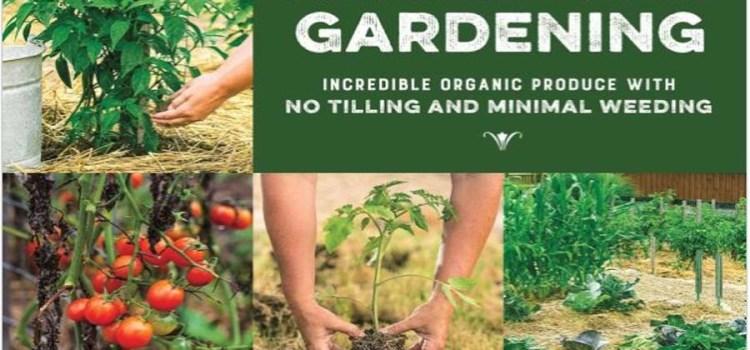 The Raised Row Garden Method. No Tilling, Less Weeding, More Fun!
