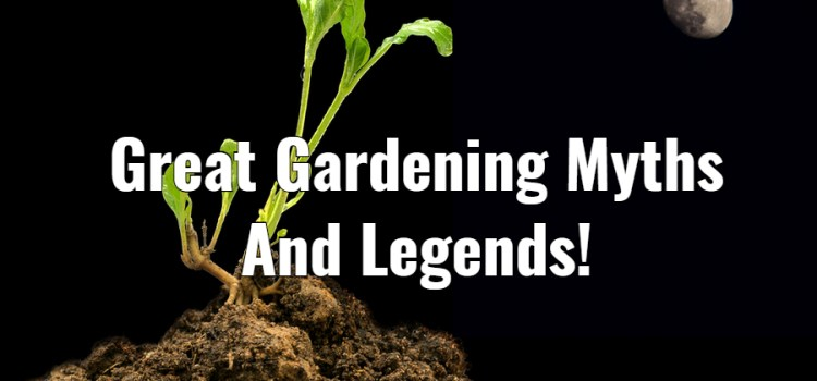 5 Great Old-Time Garden Myths And Legends – True or False?