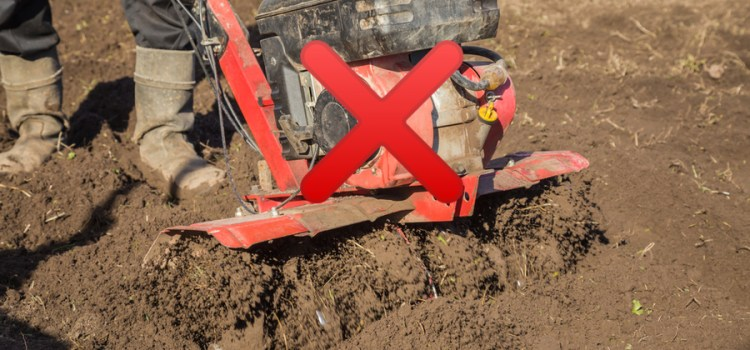 2 Reasons Why You Should Never Use A Rototiller In Your Garden