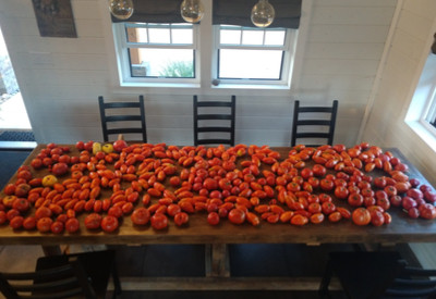 record setting harvest