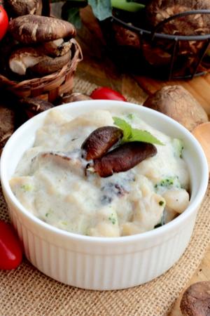 condensed cream of mushroom soup