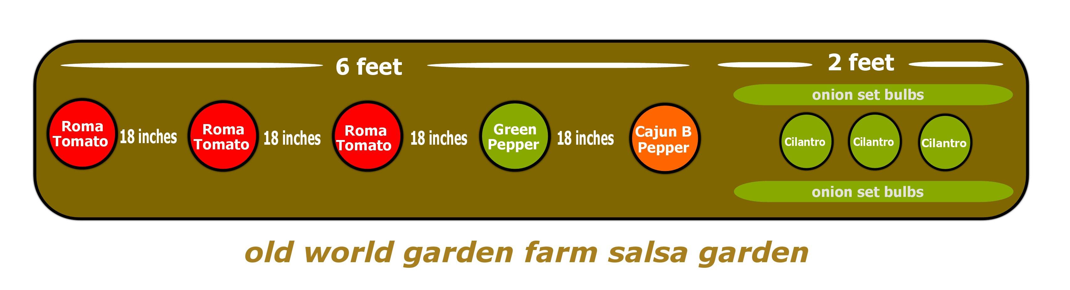 Plant A Salsa Garden In One Hour! Old World Garden Farms