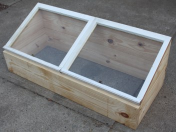 Our cold frame built form a pair of old window sashes and two pieces of 2 x 10 x 10' framing lumeber