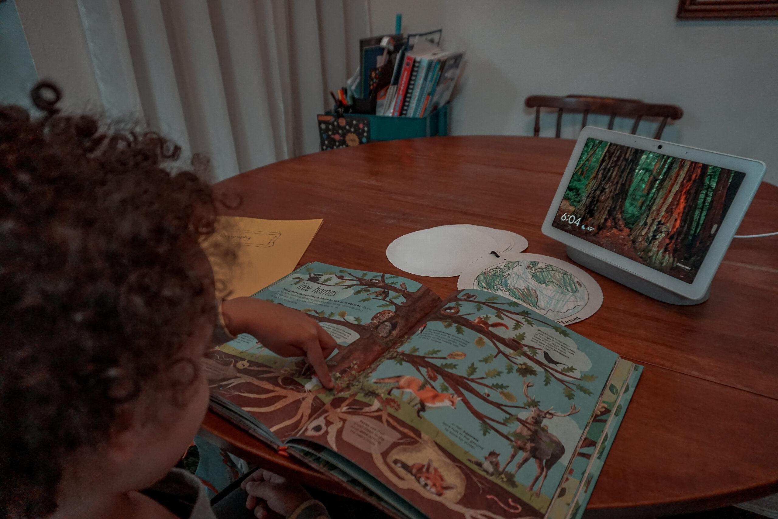 iberdrola Texas renewable wind energy for homeschool with the google hub