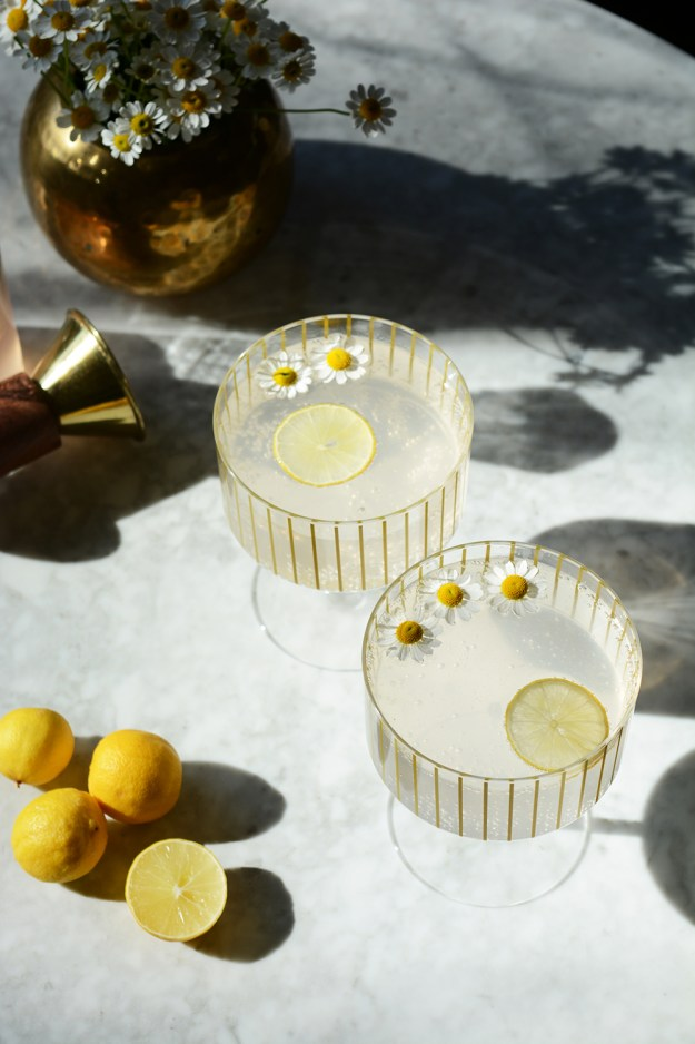 Lemon Lavender Shrub Mocktail