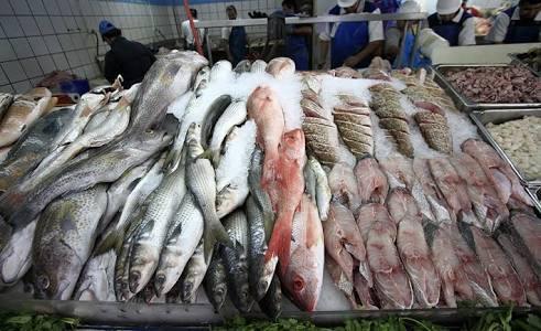 Locatarios esperan repunte de venta de pescado entre mañana y el viernes