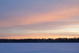 Розовые краски заката, зима, фотография