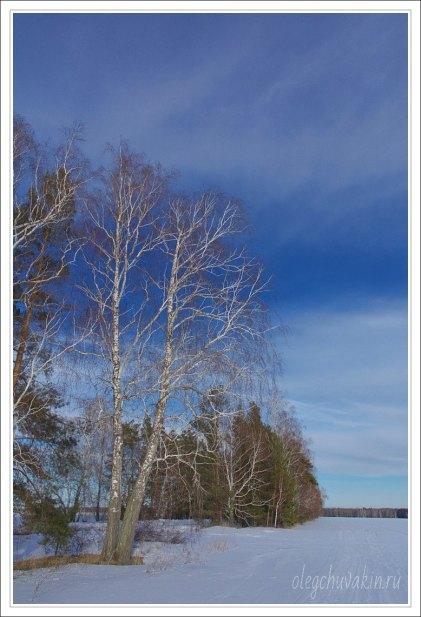 Небо, снег, солнце, фото, Олег Чувакин, 02