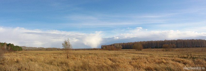 Мечта, осень, луг, фото