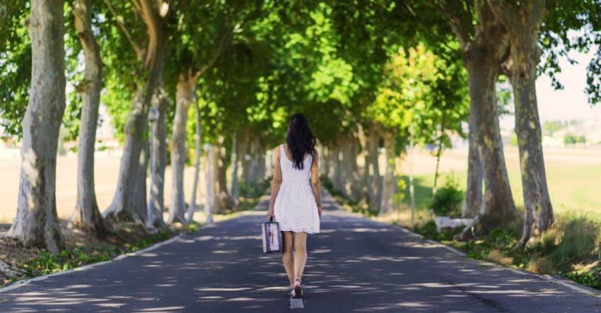 Аллея, деревья, девушка, чемодан, фото, рассказ, Ева Лех, писательница