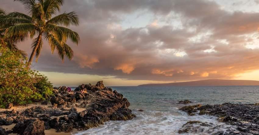Остров, океан, пальма, буря, фото, иллюстрация