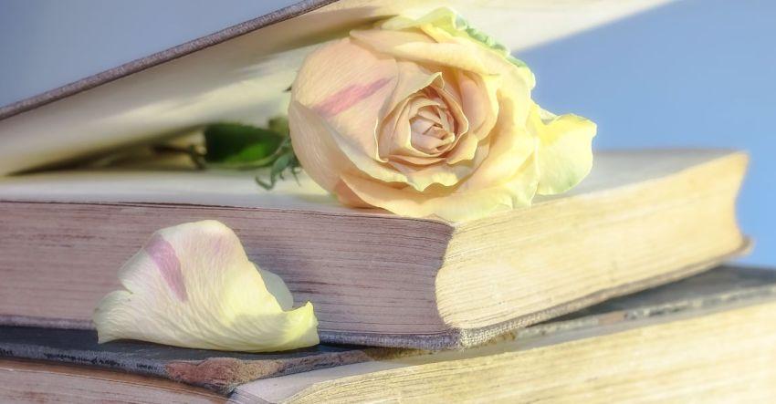 Интервью у писателя, о читателях, литературе, о писателях, смысле жизни и счастье