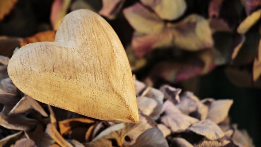 Сердце, деревянное, холодное