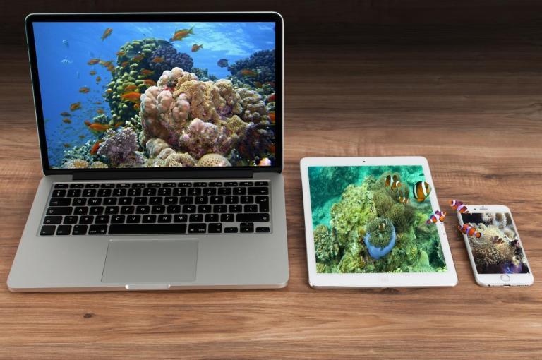 Океан на экранах, глубина, кораллы, счастье