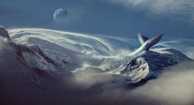 Океан, погружение, воображение, фантазия, писательство, писатель, литература