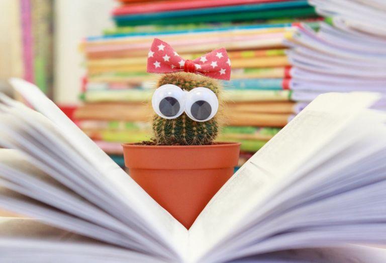 Кактус, колючий, колючки, глаза, книга, читатель