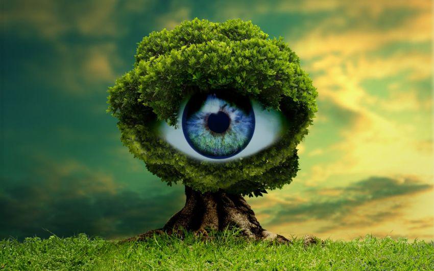 Литературная обработка текста, волшебство, глаз писателя