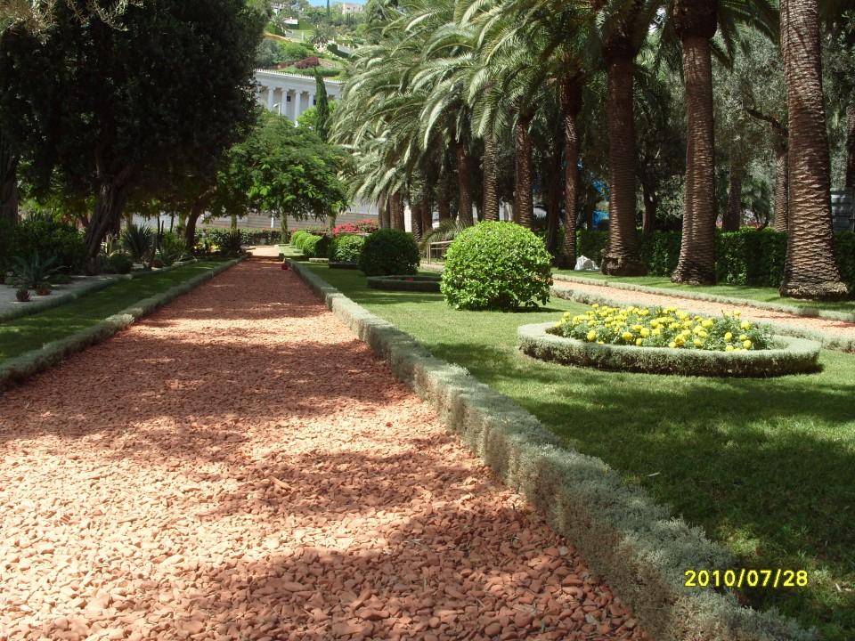 Аллеи и клумбы Бахайских садов
