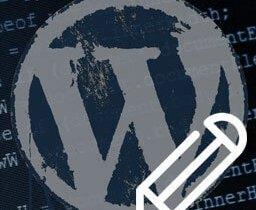 wp_editor_broken_mini