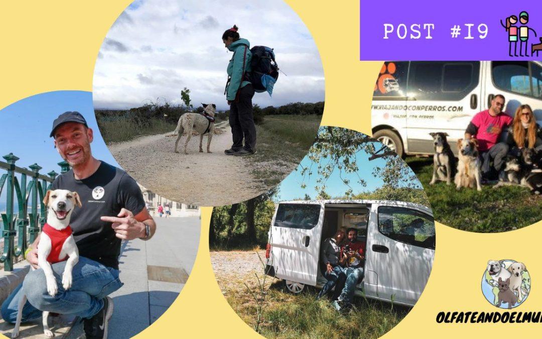 12 lugares para viajar con perro contados por 4 familias viajeras