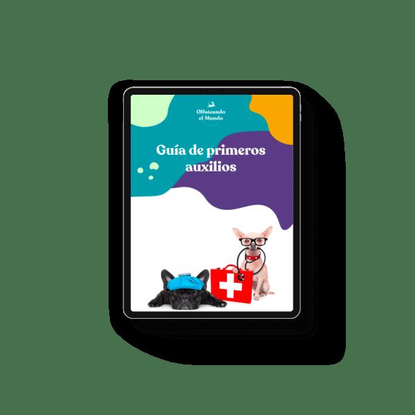 Guia primeros auxilios veterinarios Olfateandoelmundo