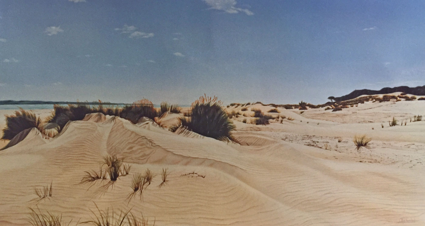 Big Sand Dune Coto de Doñana