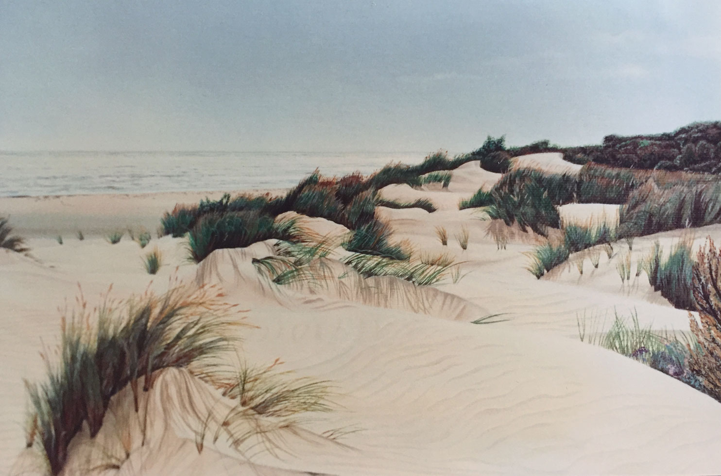 Dunes in Coto Doñana and the river