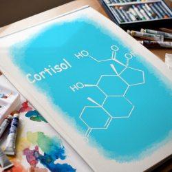 кортизол стресс