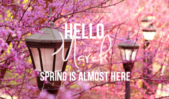 68741-hello-march-spring-is-almost-here