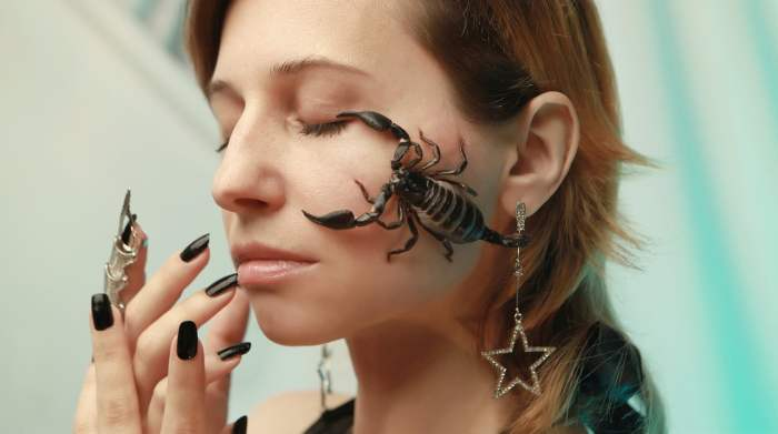 scorpion, portrait, horoscope