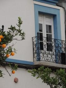 Castro Marim windows