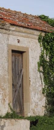 Door with cat