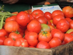 In winter only those with greenhouses sell tomatoes