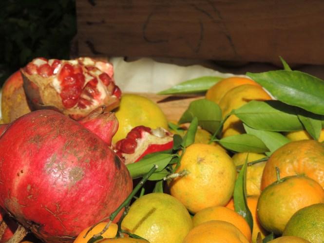 Lemons and pomegranates