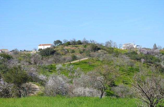 Approaching Funchosa de Cima