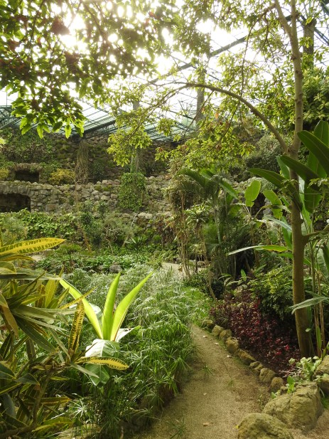 Grottoes in the hothouse