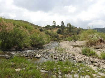 The river bed