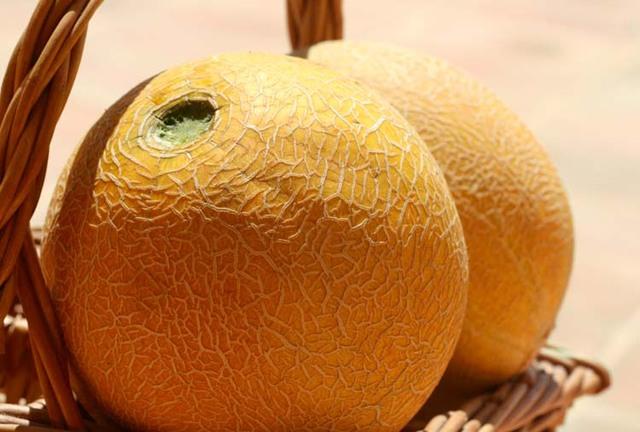 La cuisine du jardin Melon