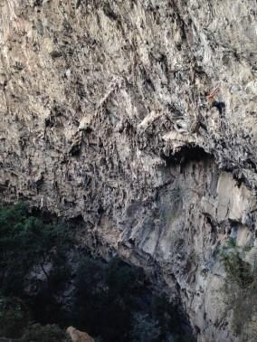 Liam climbing El Trigio, El Chonta, Mexcio © Oli Grounsell