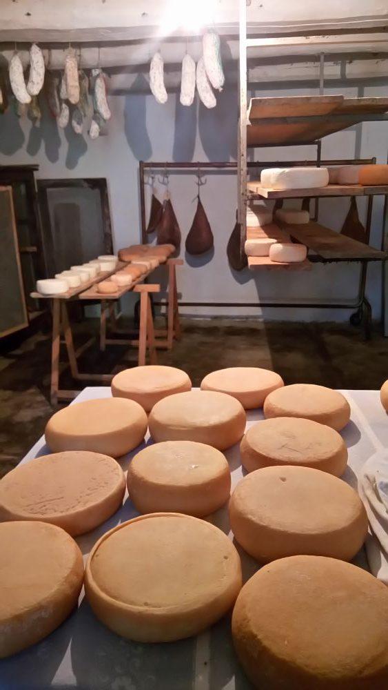 ペコリーノチーズ
