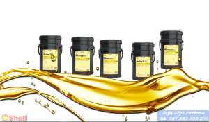 Agen Oli Shell Morlina 150