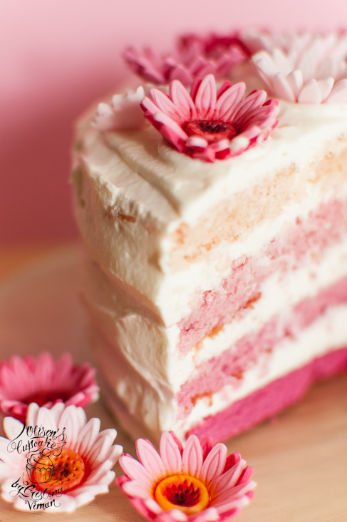 Rustic Pink Ombre Cake Olison S Cupcakes