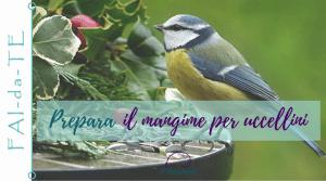 Palline di grasso e semi fai-da-te per uccellini
