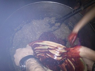 Sangre y arroz